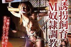人妻誘拐飼育 M奴隷調教